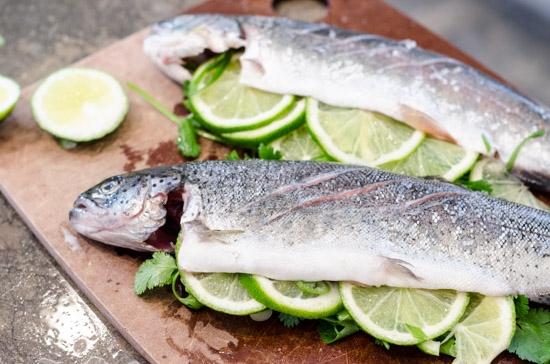 Cara Menyimpan Ikan Segar Agar Tak Mudah Busuk