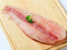 Ikan Terbukti Membuat Otak Janin Cerdas