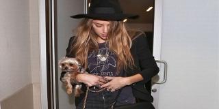 Karena Anjing, Istri Johnny Depp Terancam Dipenjara 10 Tahun