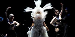 Atasi Gejala Kegilaan Lady Gaga Dengan Kostum