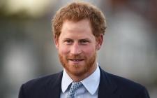 Pangeran Harry Yakin Putri Diana Ingin Banyak Cucu