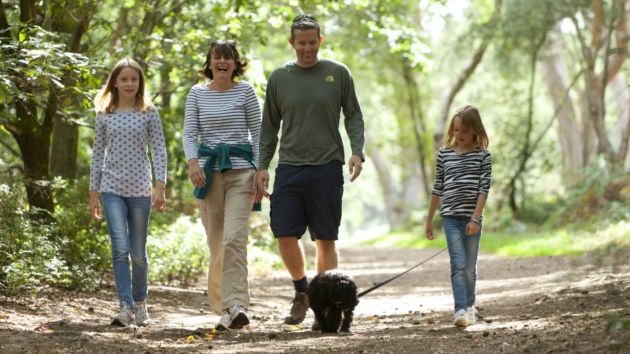 Berjalan Kaki Bisa Deteksi Kesehatan Jantung