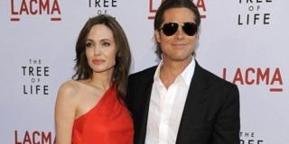 Angelina Jolie Stop Kasih Brad Pitt Keturunan